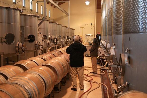 Giới thiệu về quy trình sản xuất rượu vang